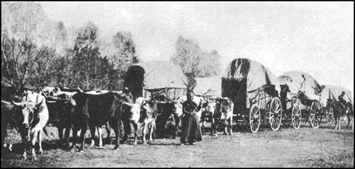wagon-trains-history
